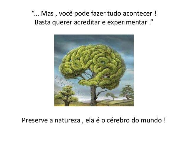 """""""... Mas , você pode fazer tudo acontecer ! Basta querer acreditar e experimentar .""""  Preserve a natureza , ela é o cérebr..."""