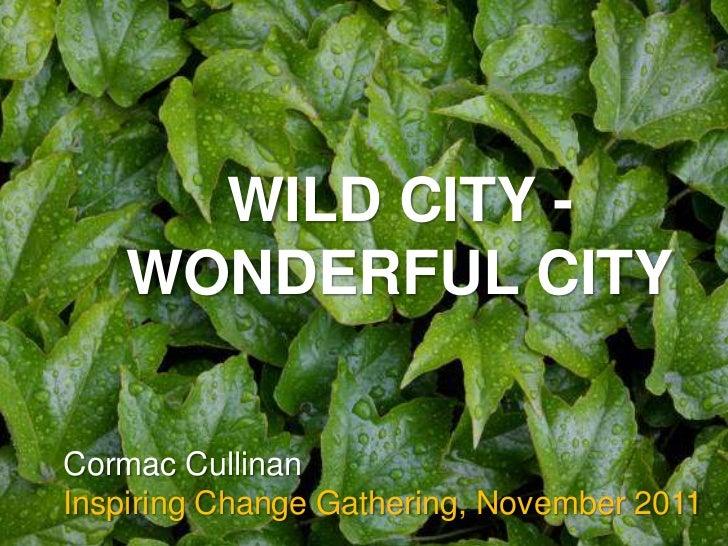 WILD CITY -    WONDERFUL CITYCormac CullinanInspiring Change Gathering, November 2011