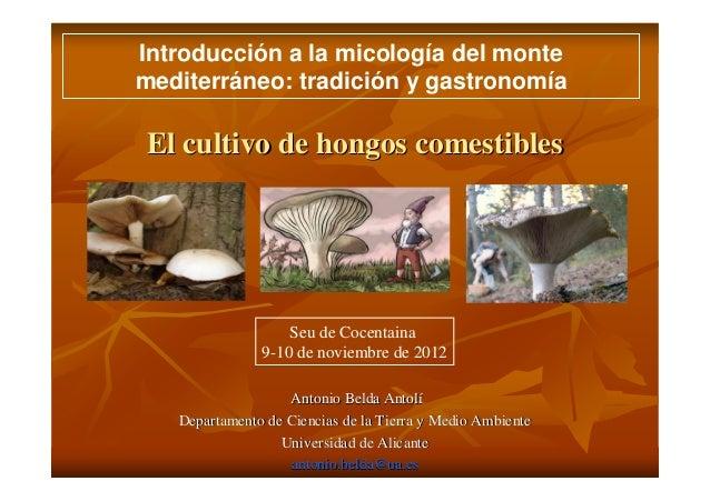 Introducción a la micología del montemediterráneo: tradición y gastronomíaEl cultivo de hongos comestibles                ...