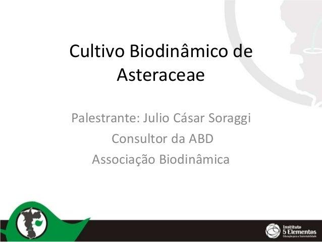 Cultivo Biodinâmico de Asteraceae Palestrante: Julio Cásar Soraggi Consultor da ABD Associação Biodinâmica