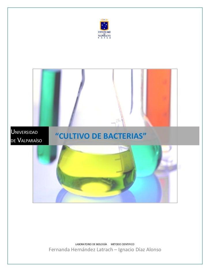 """UNIVERSIDAD DE VALPARAÍSO                   """"CULTIVO DE BACTERIAS""""                                LABORATORIO DE BIOLOGÍA ..."""