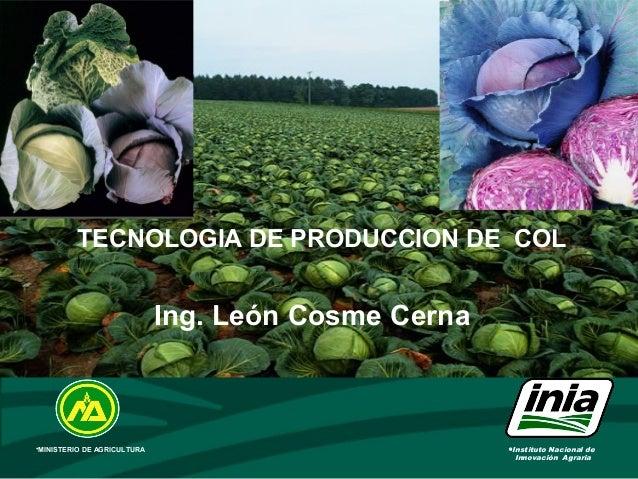 •Instituto Nacional de Innovación Agraria •MINISTERIO DE AGRICULTURA TECNOLOGIA DE PRODUCCION DE COL l Ing. León Cosme Cer...