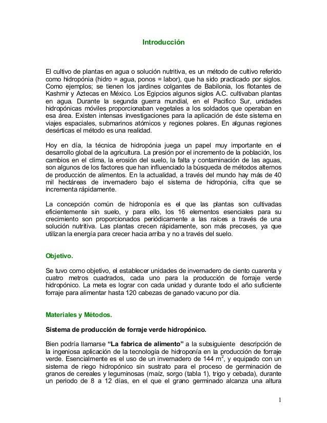 Introducción  El cultivo de plantas en agua o solución nutritiva, es un método de cultivo referido como hidropónia (hidro ...