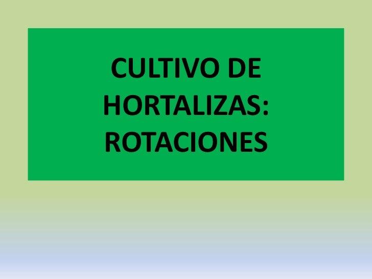CULTIVO DEHORTALIZAS:ROTACIONES