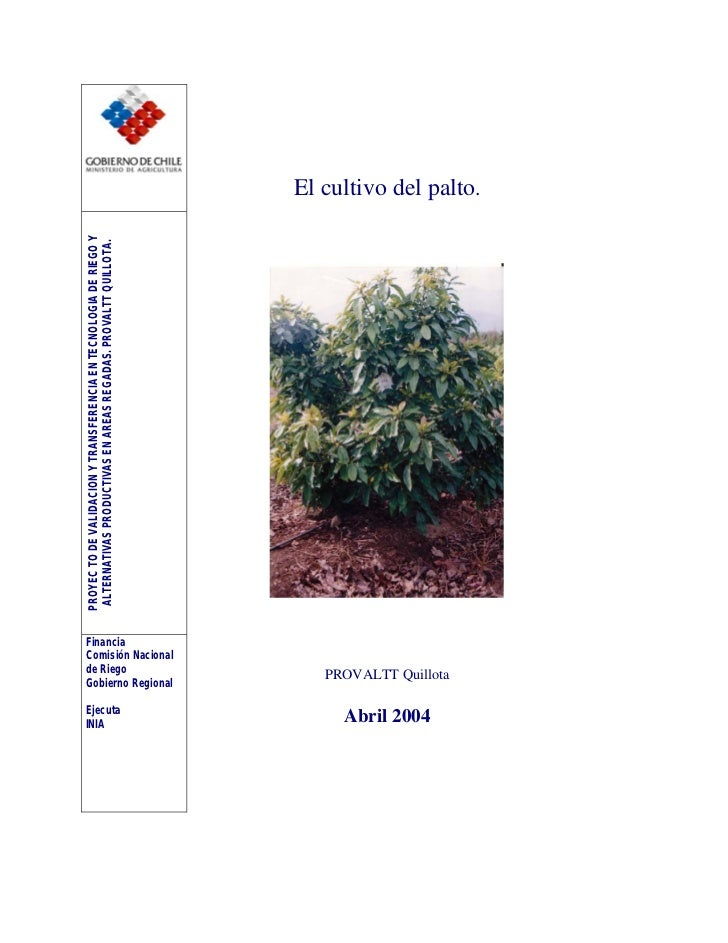PROYEC TO DE VALIDACION Y TRANSFERENCIA EN TECNOLOGIA DE RIEGO YINIA                                     ALTERNATIVAS PROD...
