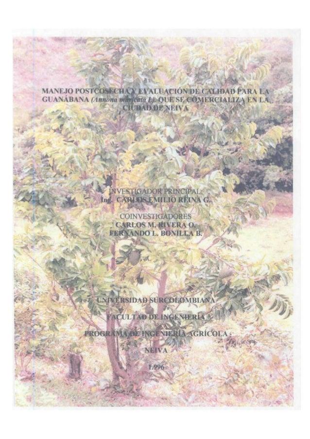 CONTENIDO  INTRODUCCIÓN  23  1. REVISIÓN DE LITERATURA  25  1.1 GENERALIDADES DE LA GUANÁBANA Y SU CULTIVO  25  1.1.1 Taxo...