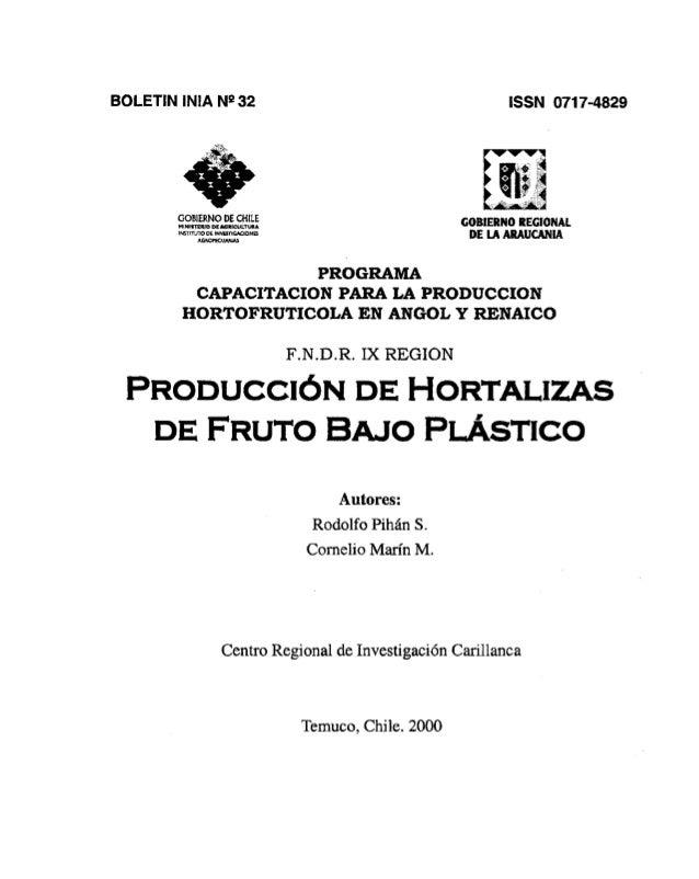 Cultivos bajo plastico
