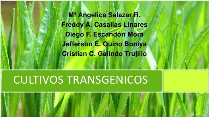 Mª Angelica Salazar R.       Freddy A. Casallas Linares        Diego F. Escandón Mora       Jefferson E. Quino Boniya     ...