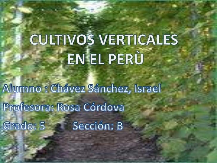 Cultivos verticales for Cultivos verticales definicion
