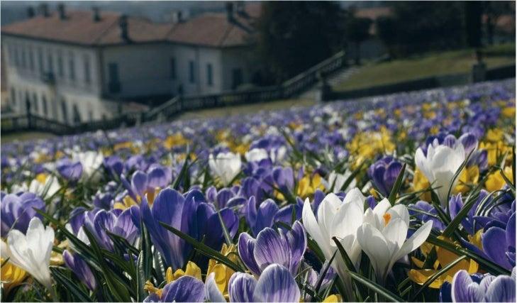 Cultura a Varese. Un particolare del giardino della Villa della Porta Bozzolo