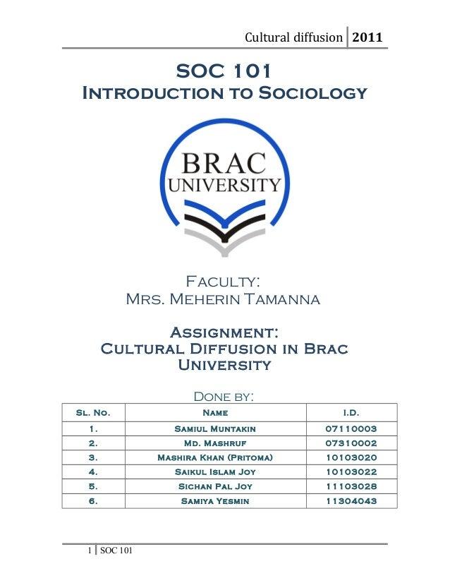 SOC101-term paper-- Cultural diffusion