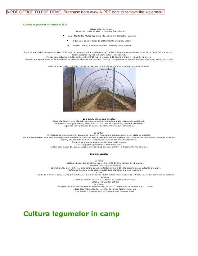 A-PDF OFFICE TO PDF DEMO: Purchase from www.A-PDF.com to remove the watermark        Cultura legumelor in solarii si sere ...