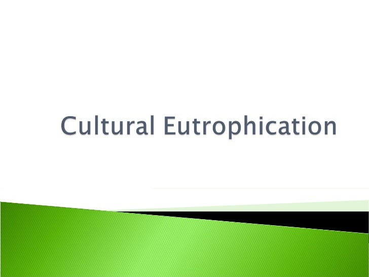 essay about eutrophication