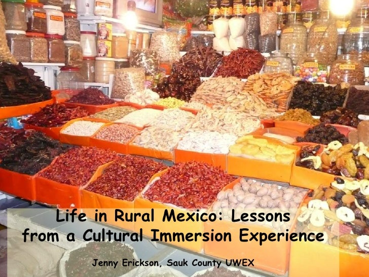 Life in Rural Mexico: Lessons from a Cultural Immersion Experience         Jenny Erickson, Sauk County UWEX