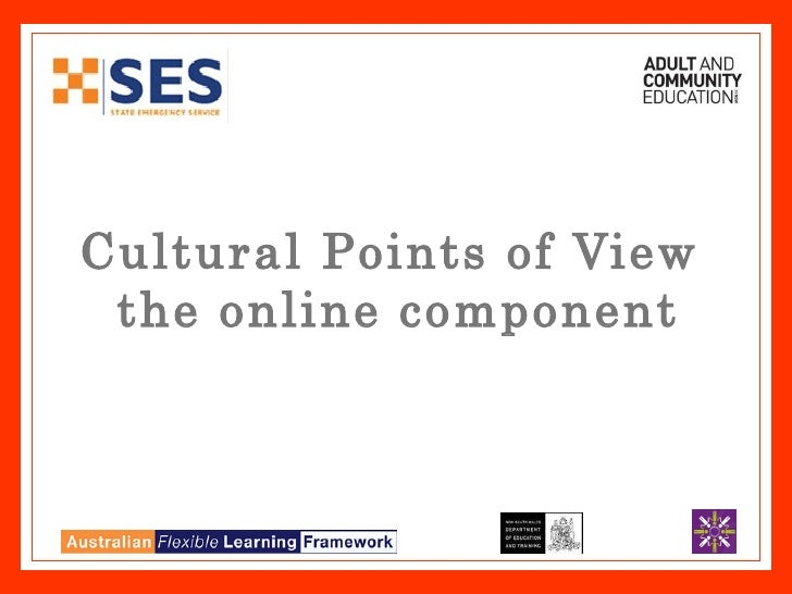 Cultural Points of View  the online component