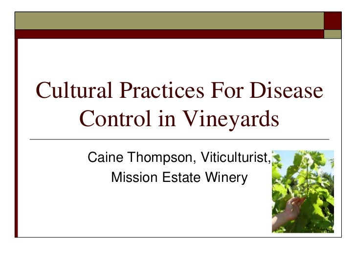 Cultural Practices For Disease Control in Vineyards<br />Caine Thompson, Viticulturist, <br />Mission Estate Winery<br />