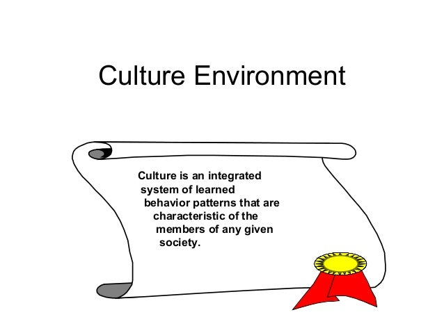 Culture Environment Culture is an integrated system of learned behavior patterns that are characteristic of the members of...