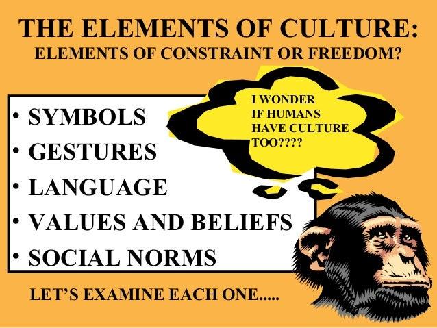 Symbols Elements of Culture The Elements of Culture