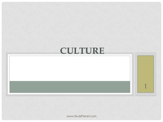 Culture  multicultural management