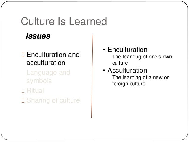 Differentiate Between Enculturation And Acculturation Essay Help