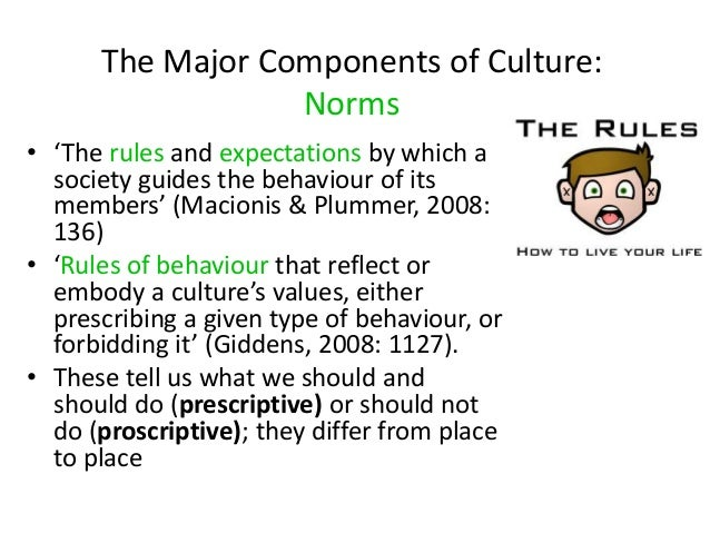 the place of norms in society A summary of norms in 's society and culture learn exactly what happened in this chapter, scene, or section of society and culture and what it means perfect for acing essays, tests, and quizzes, as well as for writing lesson plans.