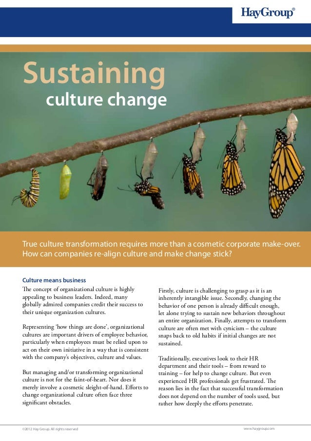 1Sustaining               culture changeTrue culture transformation requires more than a cosmetic corporate make-over.How ...