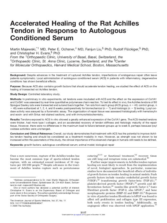 Accelerated Healing of the Rat Achilles Tendon in Response to Autologous Conditioned Serum ¨ Martin Majewski,*y MD, Peter ...