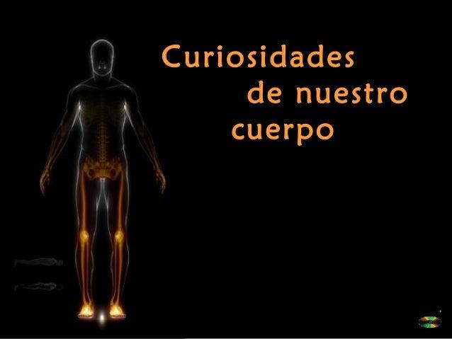 Curiosidades de nuestro cuerpo