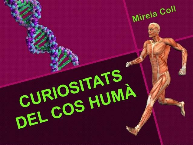 Que es el cos humá?  • Aparells  • Sistemes  • òrgans  • Teixits  • Cèl·lules  • Molècules.