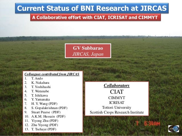 Current Status of BNI Research at JIRCAS GV Subbarao JIRCAS, Japan A Collaborative effort with CIAT, ICRISAT and CIMMYT Co...