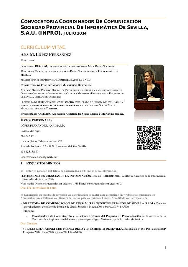 Curriculum Ana López convocatoria coordinadora INPRO julio 2014