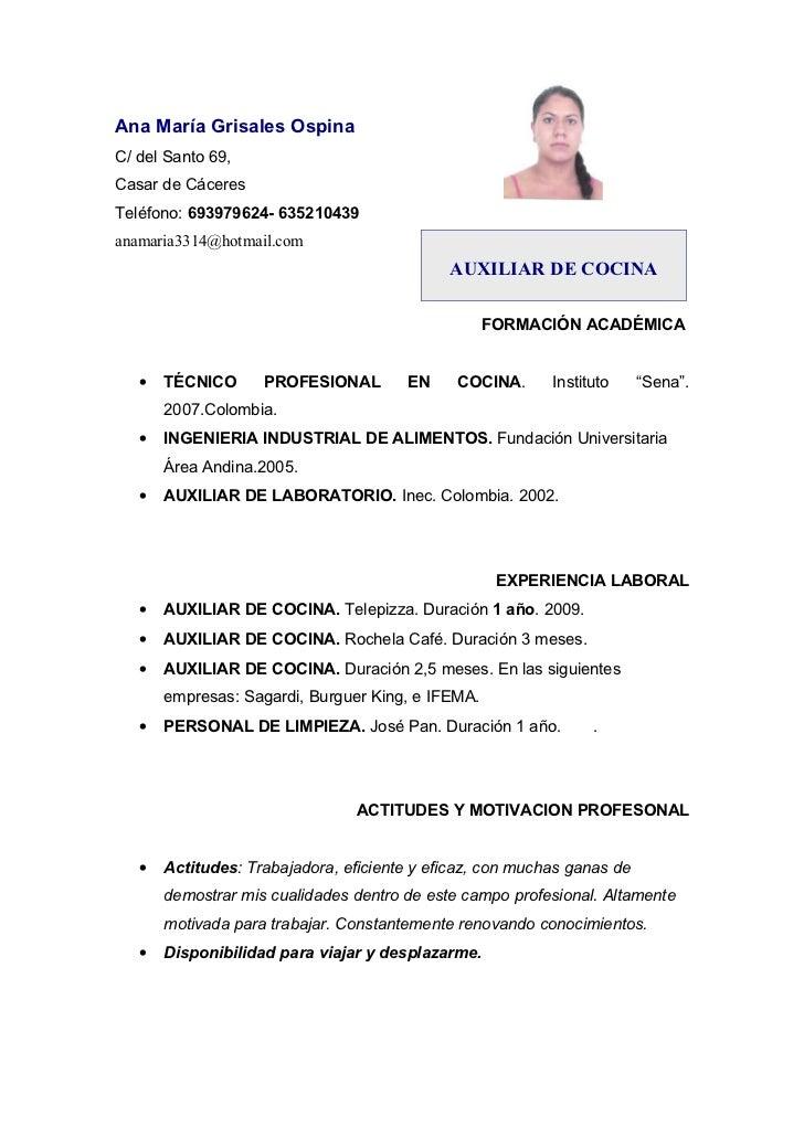 Moderno Formato De Curriculum Del Chef Del Hotel Molde - Colección ...