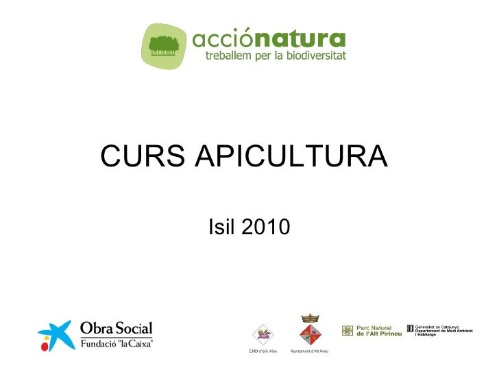 CURS APICULTURA Isil 2010