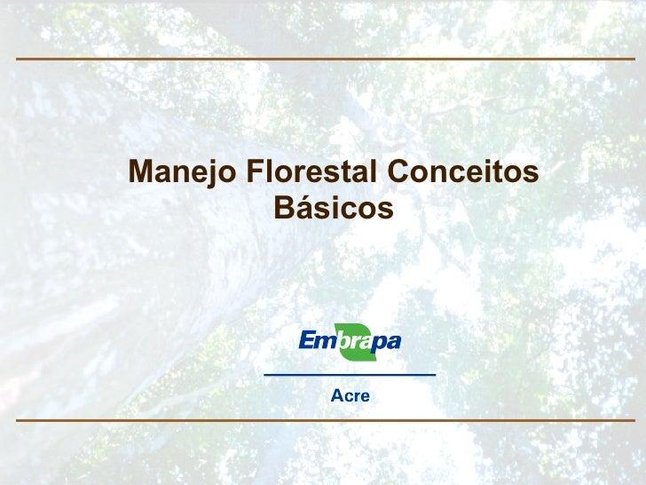 Manejo Florestal Conceitos Básicos