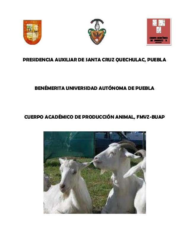 Reproduccion en cabras Quechulac