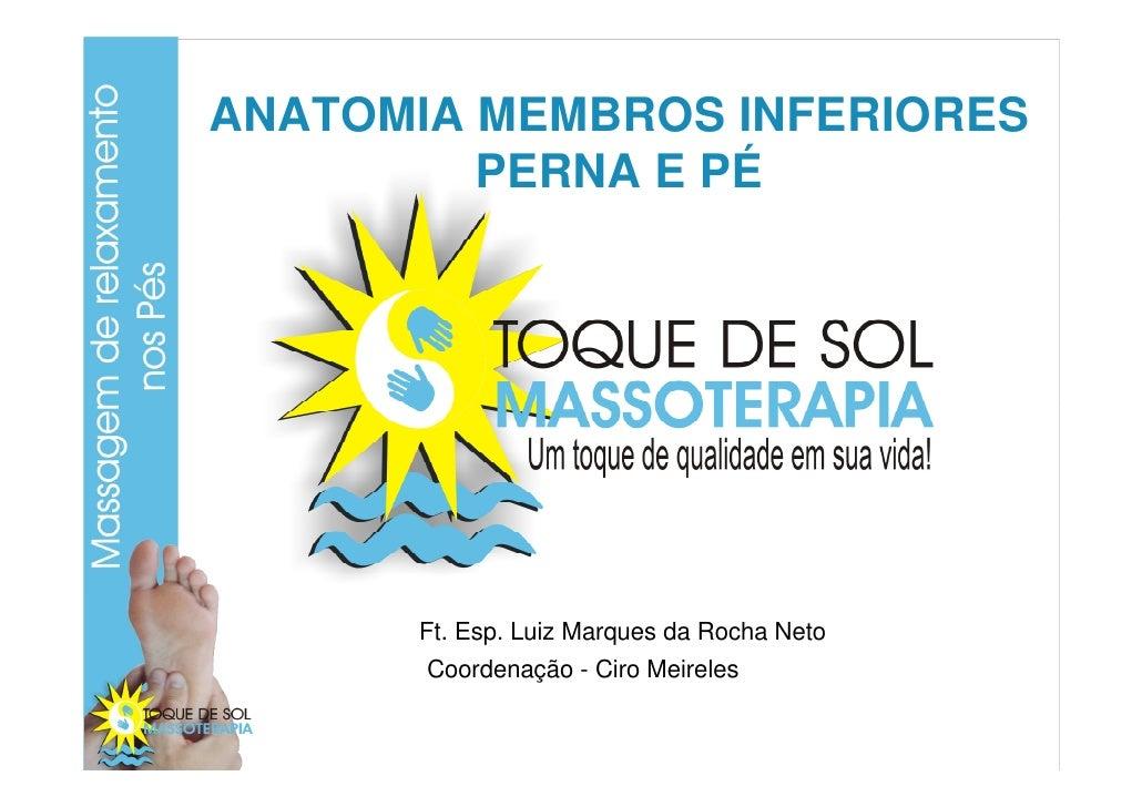 ANATOMIA MEMBROS INFERIORES          PERNA E PÉ           Ft. Esp. Luiz Marques da Rocha Neto        Coordenação - Ciro Me...