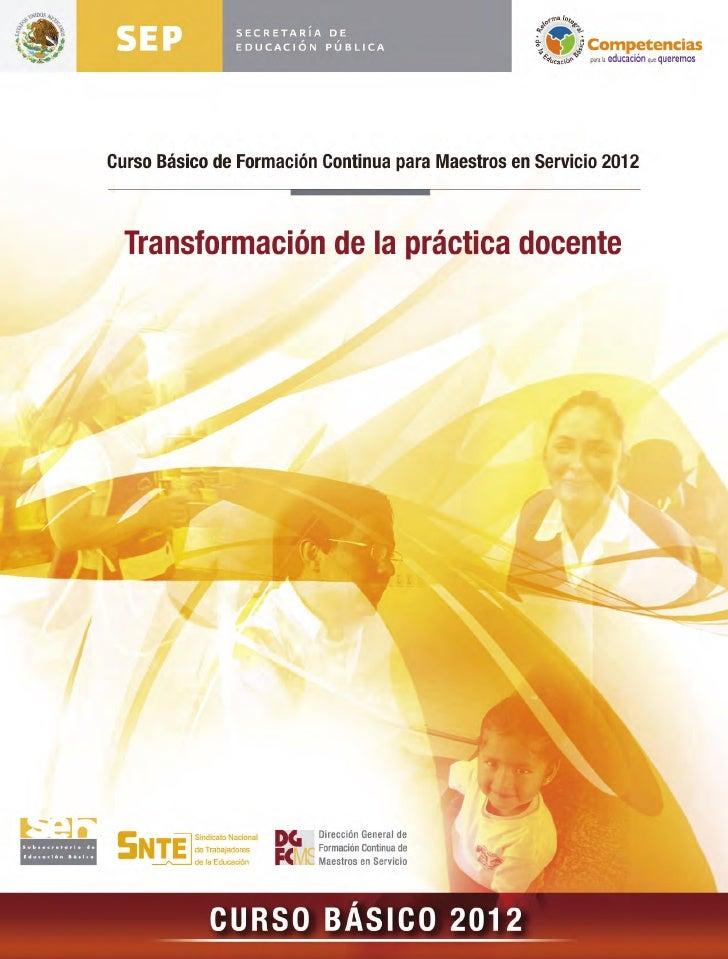 Curso basico 2012 para docentes en servicio