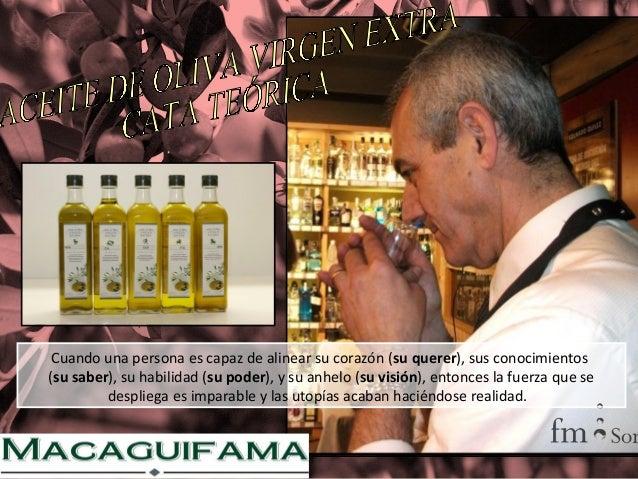 Curso de iniciación al mundo del aceite (cata).