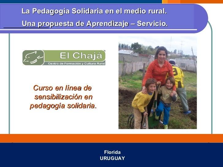 Curso de pedagogía solidaria