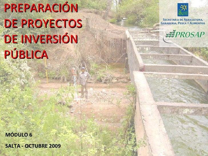 PREPARACIÓN DE PROYECTOS DE INVERSIÓN PÚBLICA MÓDULO 6 SALTA - OCTUBRE 2009