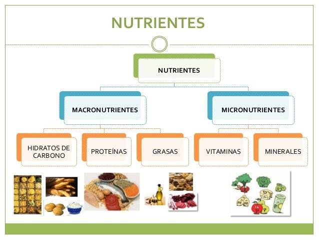 Proteinas Grasas Vitaminas y Minerales Grasas Vitaminas Minerales