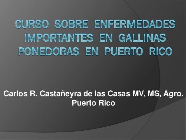 Carlos R. Castañeyra de las Casas MV, MS, Agro.                 Puerto Rico