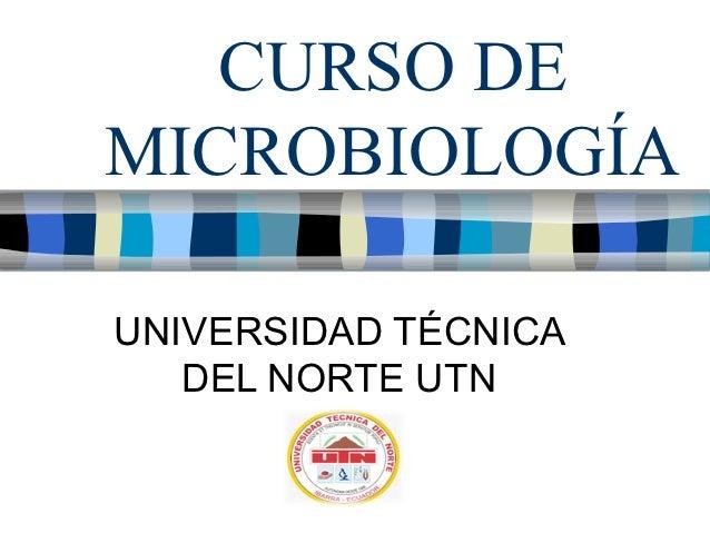 Curso microbiología