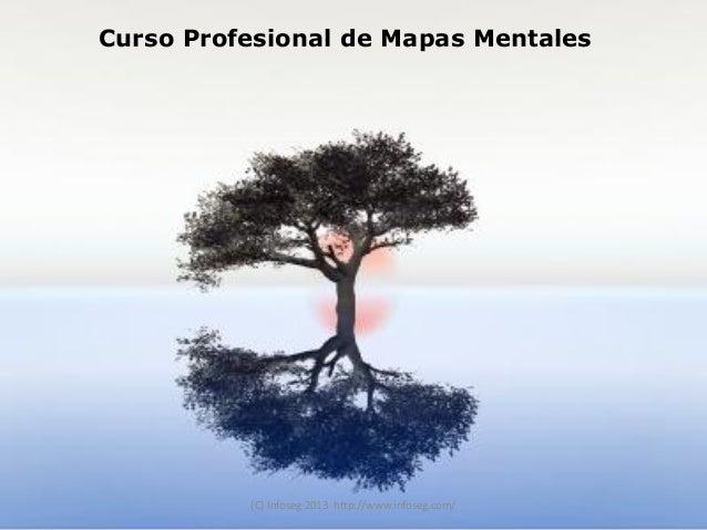 Curso Profesional de Mapas Mentales con Mind Manager
