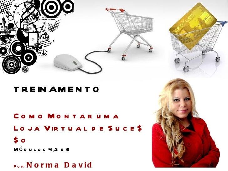 Curso Como Montar uma Loja Virtual de Sucesso - Por Norma David - Módulos 4, 5 e 6