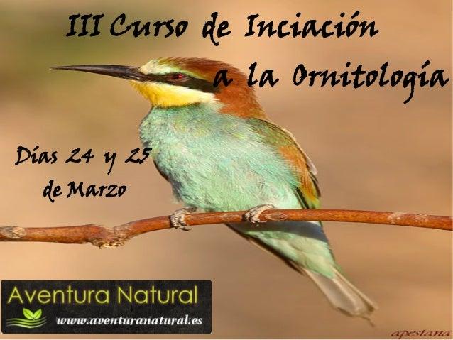 III Curso de Inciación a la Ornitología Días 24 y 25 de Marzo