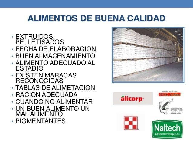 Curso produccion de trucha for Alimentos balanceados para truchas