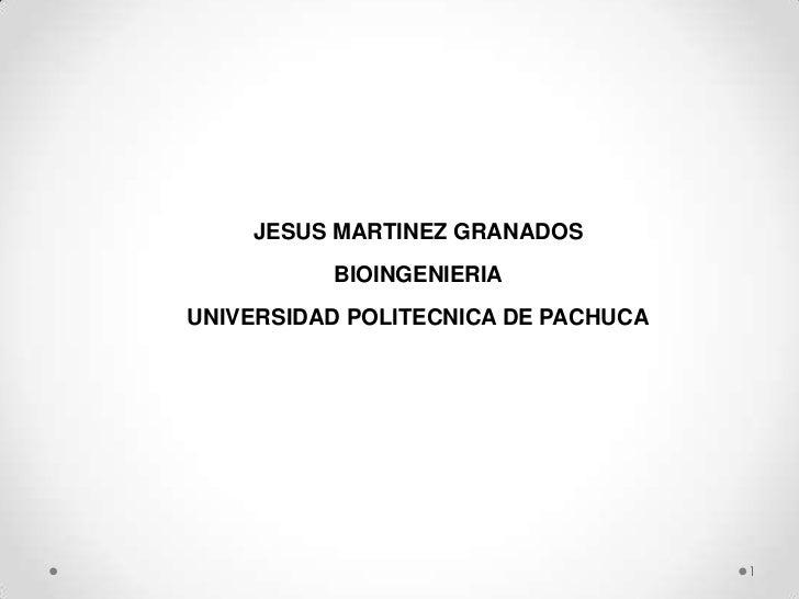 JESUS MARTINEZ GRANADOS          BIOINGENIERIAUNIVERSIDAD POLITECNICA DE PACHUCA                                     1