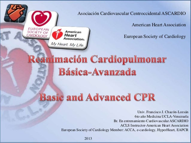 Curso RCP/CPR course 2013