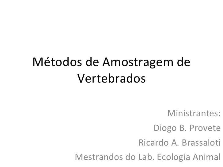 Métodos de Amostragem de Vertebrados Ministrantes: Diogo B. Provete Ricardo A. Brassaloti Mestrandos do Lab. Ecologia Animal